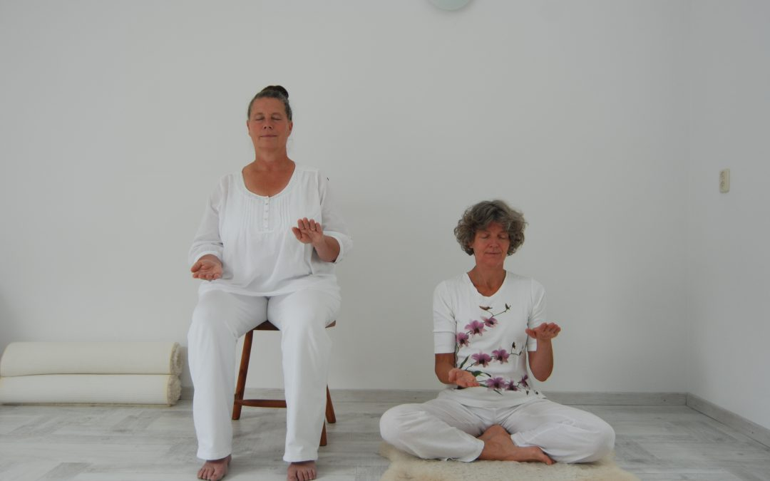 Yoga online bij Yoga Namo